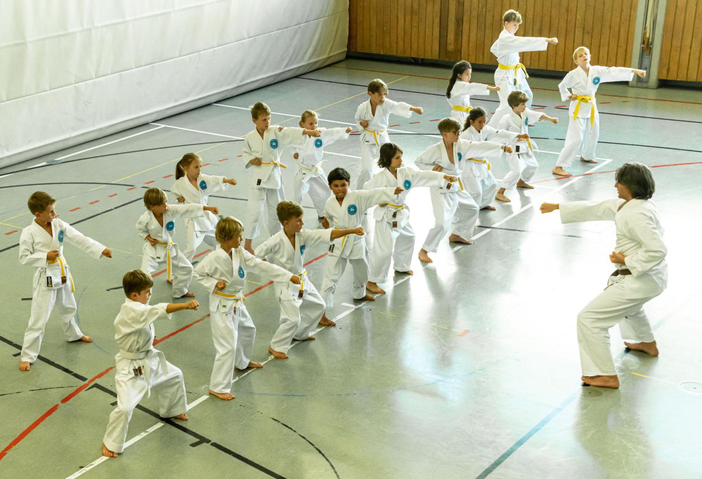 Ein Jahr Karate beim ASV Dachau
