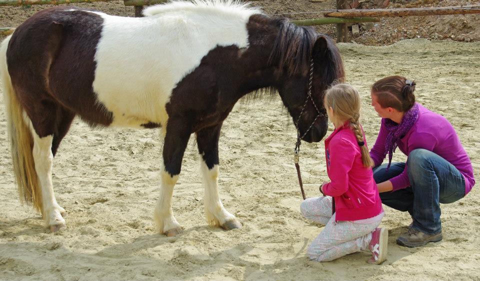 Ponyabenteuertage in den Pfingstferien