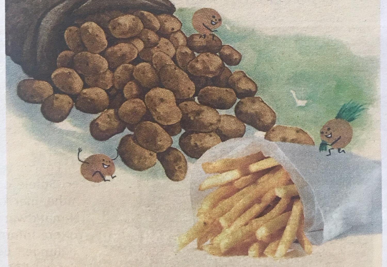 Die Kartoffel - Eine Familienausstellung