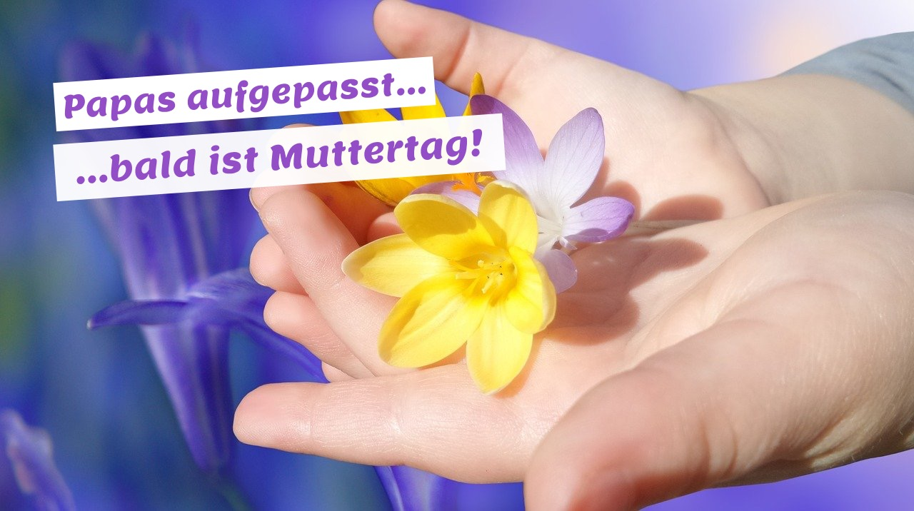 Mission Muttertag...
